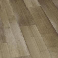 3010-3889 Дуб популярный (Trendy Oak), 32 класс
