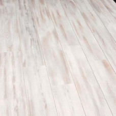 3732 Сосна Средиземноморская (Mediterenean Pine), 32 класс