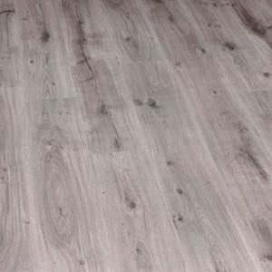 3754 Дуб Серебристо-Серый, 32 класс