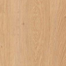 FP041 Дуб Алжирский кремовый, планка 33 класс