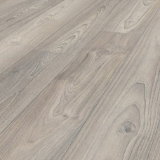 5967 Sterling Asian Oak, 33 класс